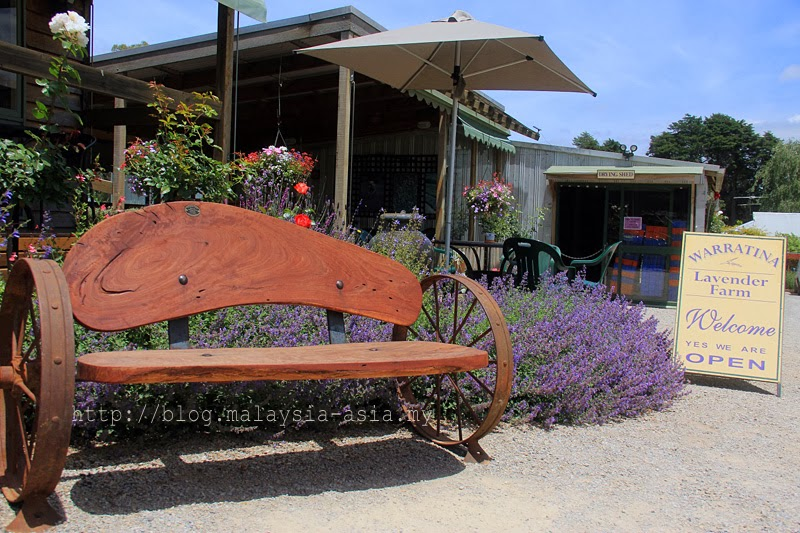 Warratina Lavender Farm Yarra Valley