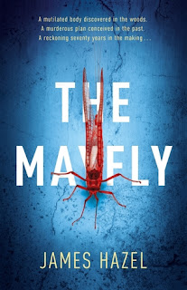 http://bookishoutsider.blogspot.com/2017/06/the-mayfly-james-hazel.html
