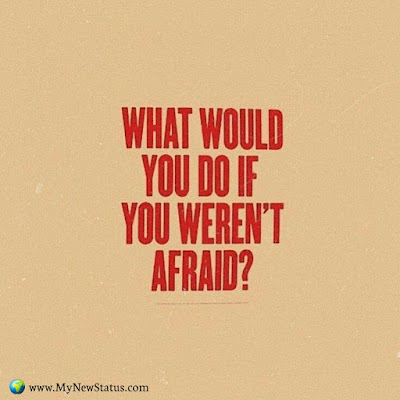 What would you do if you weren't afraid? #InspirationalQuotes #MotivationalQuotes #PositiveQuotes #Quotes #thoughts