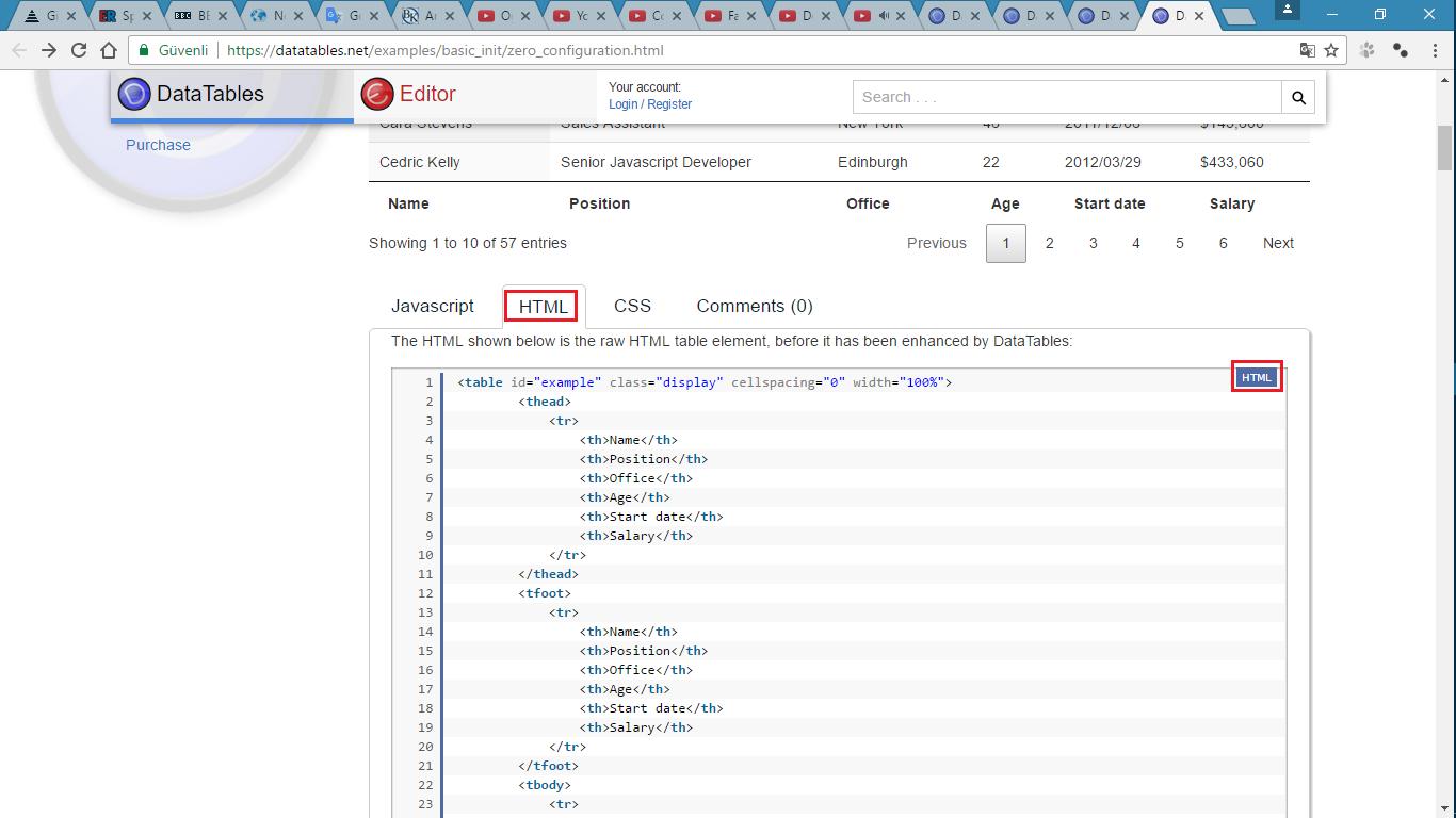 Html table eklentisi datatables 1 programlama for Html datatable