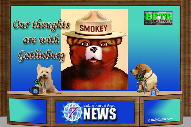 "BFTB NETWoof News set~ Smokey the Bear with ""Our thoughts are with Gatlinburg"""