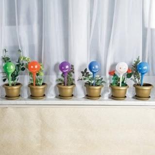 avtopoliv-rastenij-cvetochnyj-dzhinn