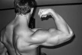 olahraga otot lengan yang efektif