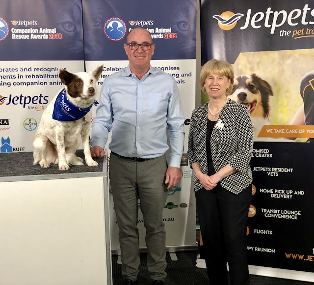 Jet Pets Rescue Awards Companion Animal Rescue rehome adopt