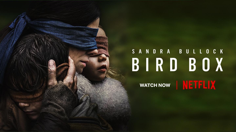 Watch bird Box with Netflix on Playstation 4
