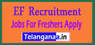 EF Recruitment 2017 Jobs For Freshers Apply