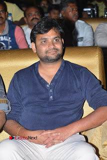 Nenu Local Audio Launch Stills  0077.JPG