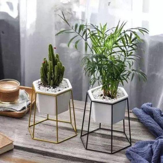 08. Desain taman minimalis indoor