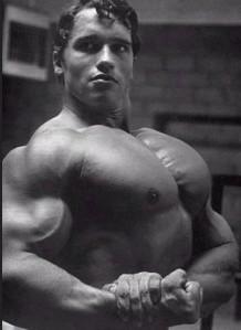 Arnold Schwarzenegger bodybuilding diet
