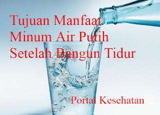 Tujuan Manfaat Minum Air Putih Setelah Bangun Tidur