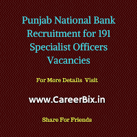 Punjab National Bank Recruitment for 191 Specialist Officers Vacancies