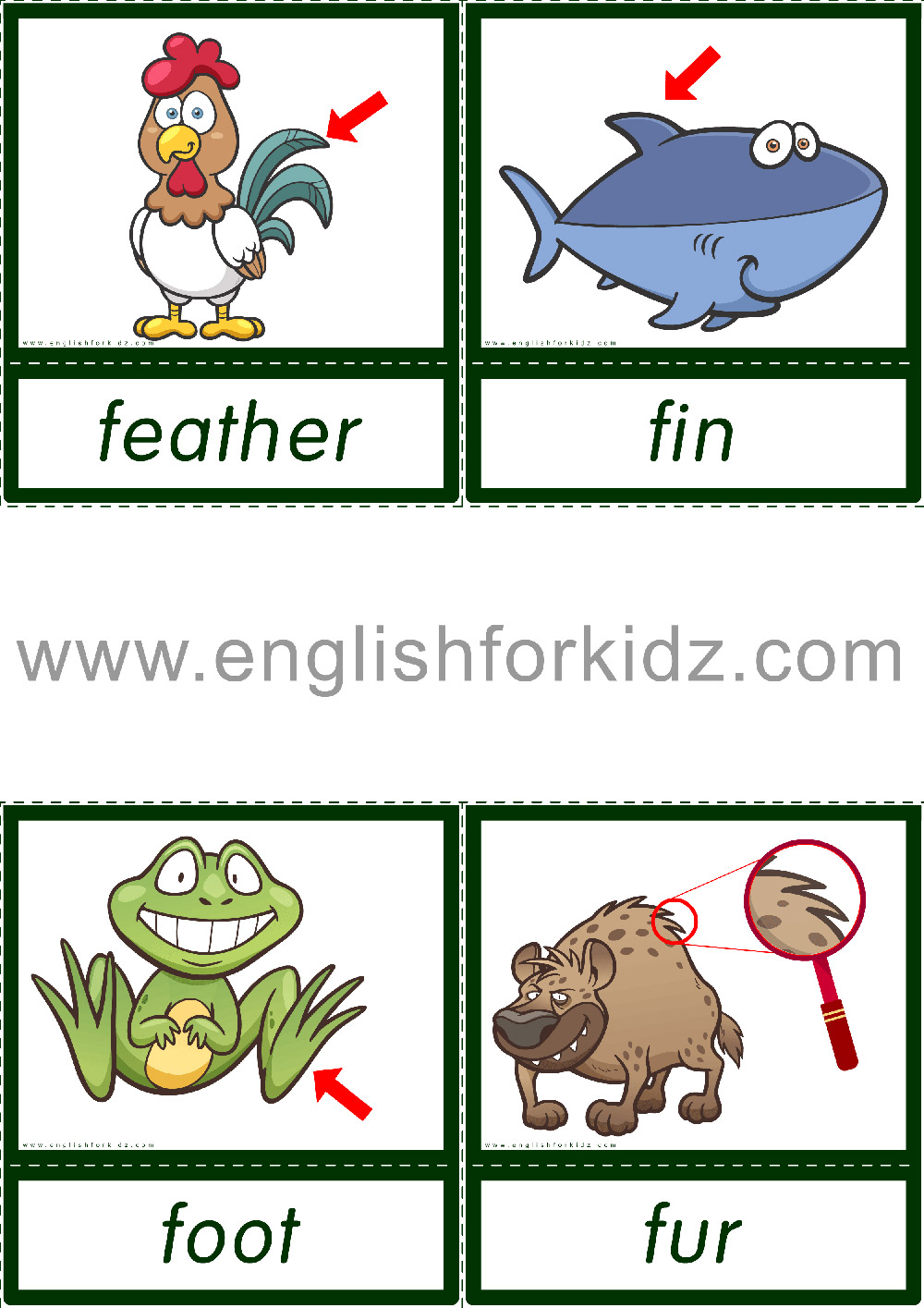 Reading Comprehension Kit. Animal Passages. Grades 1-3 [ 1415 x 1000 Pixel ]