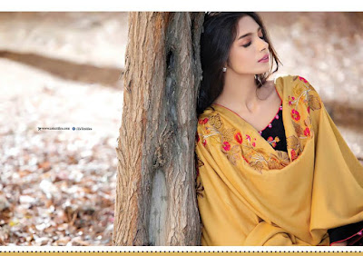 areeba-saleem-new-embroidered-designs-winter-dresses-2017-by-zs-textiles-7