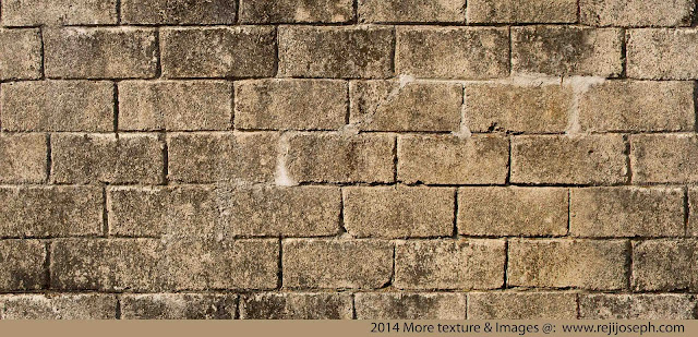 Bricks Wall Texture 00001