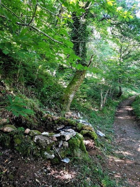 Corripa para almacenar castañas a la vera del camino del Bosque de Moal