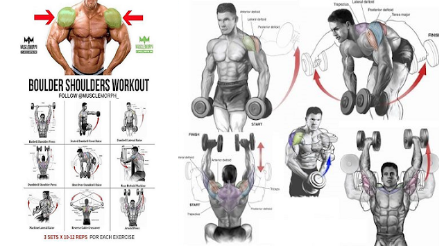 The Most Effective Shoulder Dumbbell Exercises