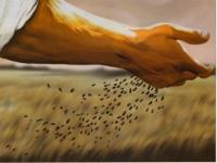 Cantos missa do 11º Domingo Comum