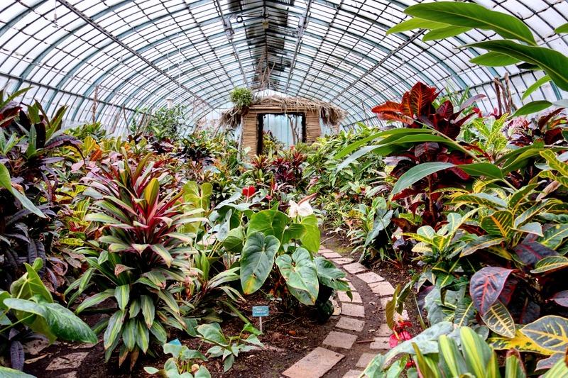 Paris la douce blog parisien lifestyle culture sorties for Jardin botanique paris