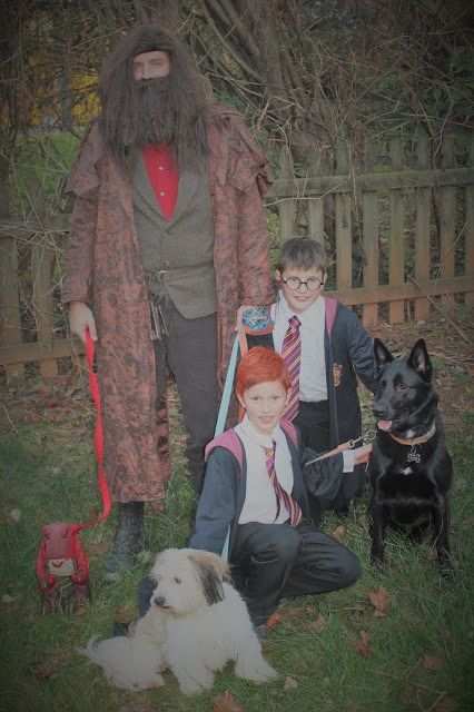 Harris Sisters GirlTalk: Harry Potter Family Costumes