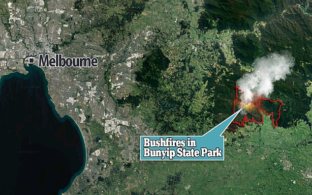 Seemorerocks: The latest from the Victoria fires