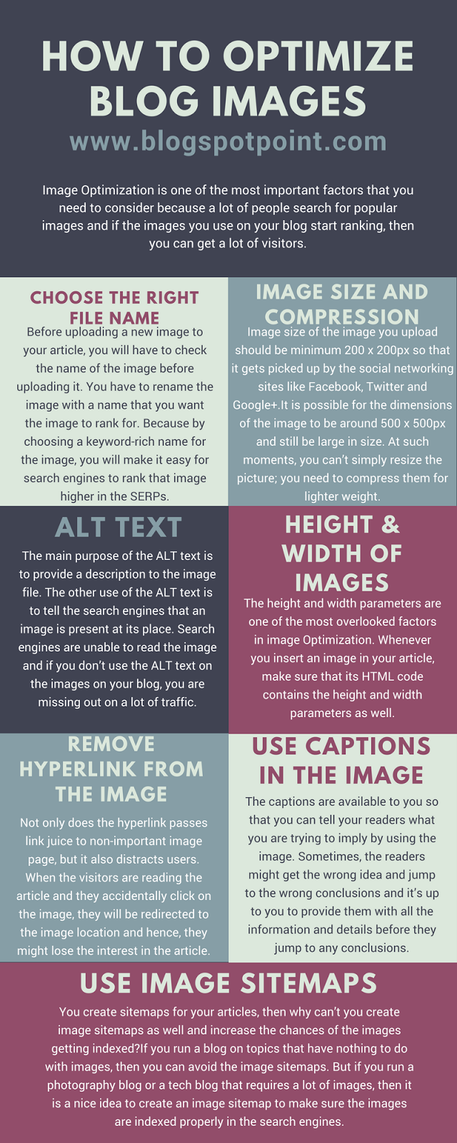 How To Optimize Blog Images To Get A Huge Search Engine Traffic [INFOGRAPHIC]