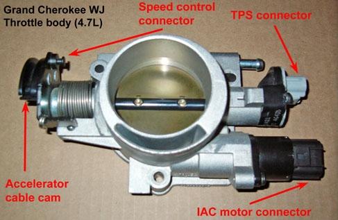 throttle_bdy_01 Nissan X Trail Qr De Wiring Diagram on