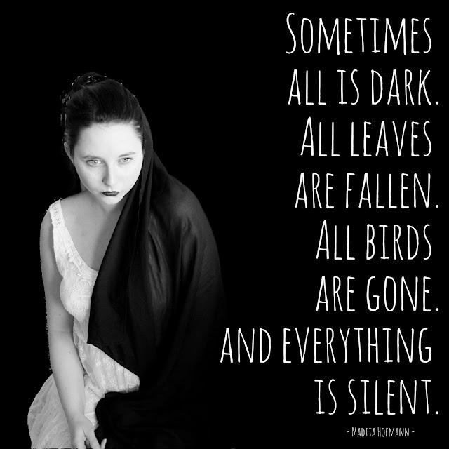 Sometimes all is dark. All leaves are fallen. All birds are gone. And everything is silent. - Madita Hofmann