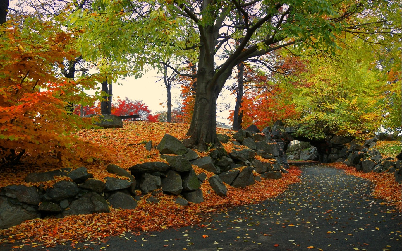 Desktop HD Autumn Wallpapers