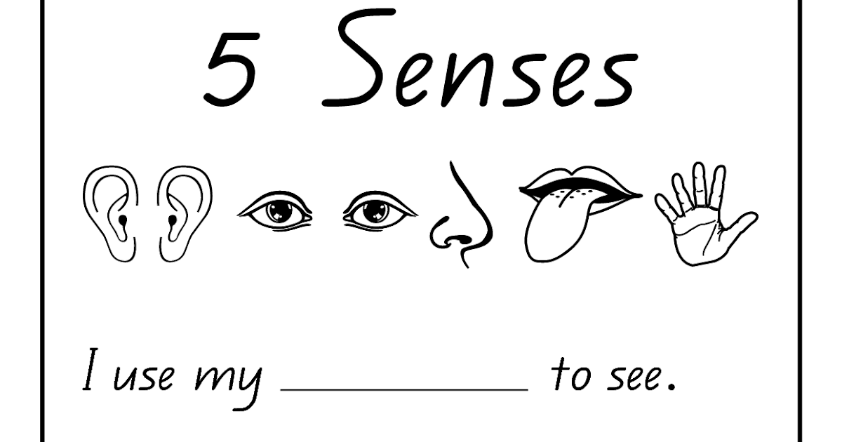 five sense worksheet: NEW 16 SCIENCE WORKSHEETS FOR GRADE