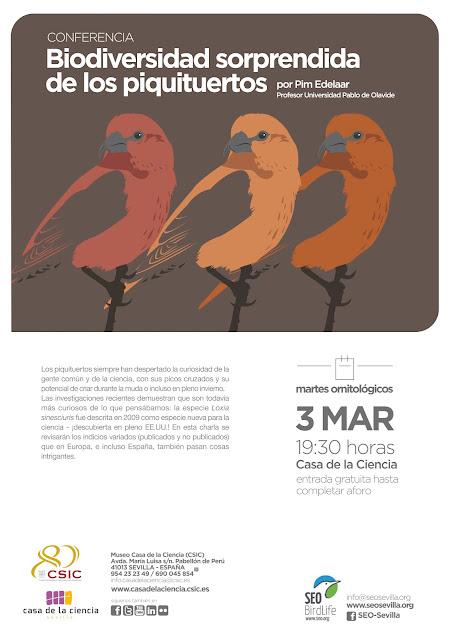 Conferencia: Biodiversidad sorprendida de los piquituertos. Por Pim Edelaar, 3 de Marzo 2020. Grupo Local SEO-Sevilla.