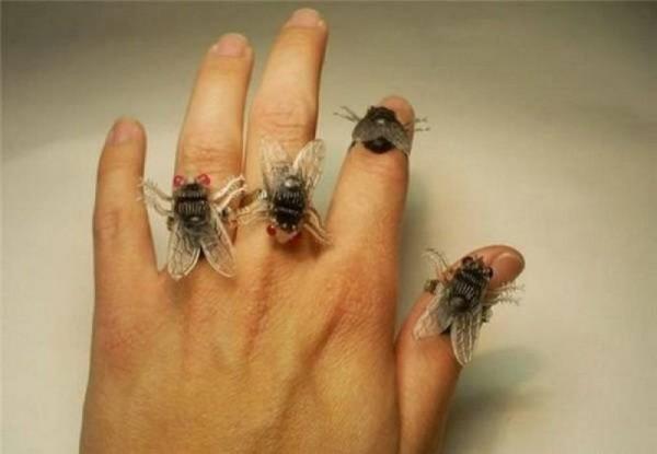 ما هو سبب تجمع الذباب على شخص على الرغم انه شخص نظيف ؟