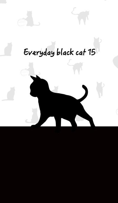 Everyday black cat15