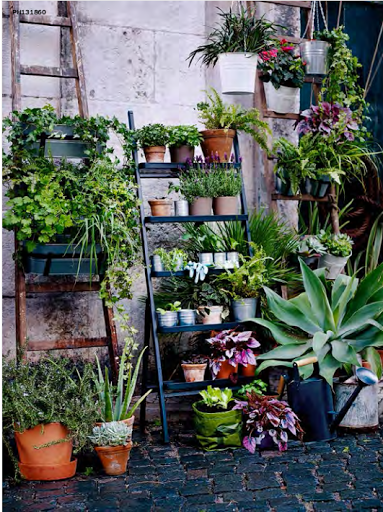 Green Thumb Meets Concrete Jungle   New Summer Pots from IKEA