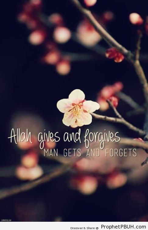 Allah gives and forgives - Islamic Quotes