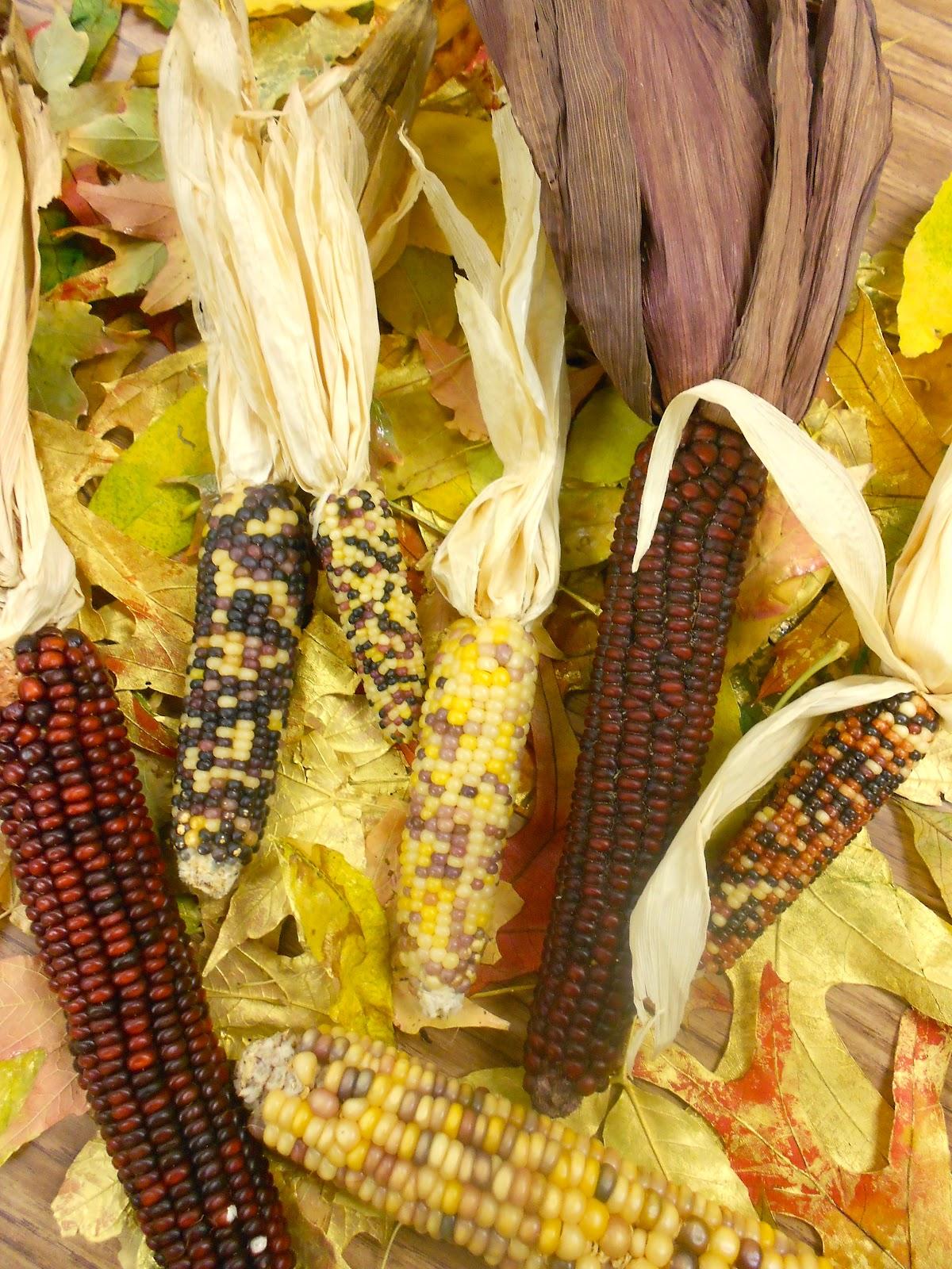 Art Eat Tie Dye Repeat 4th Grade Indian Corn Still Life