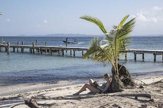 Single viaggiatore che legge in spiaggia