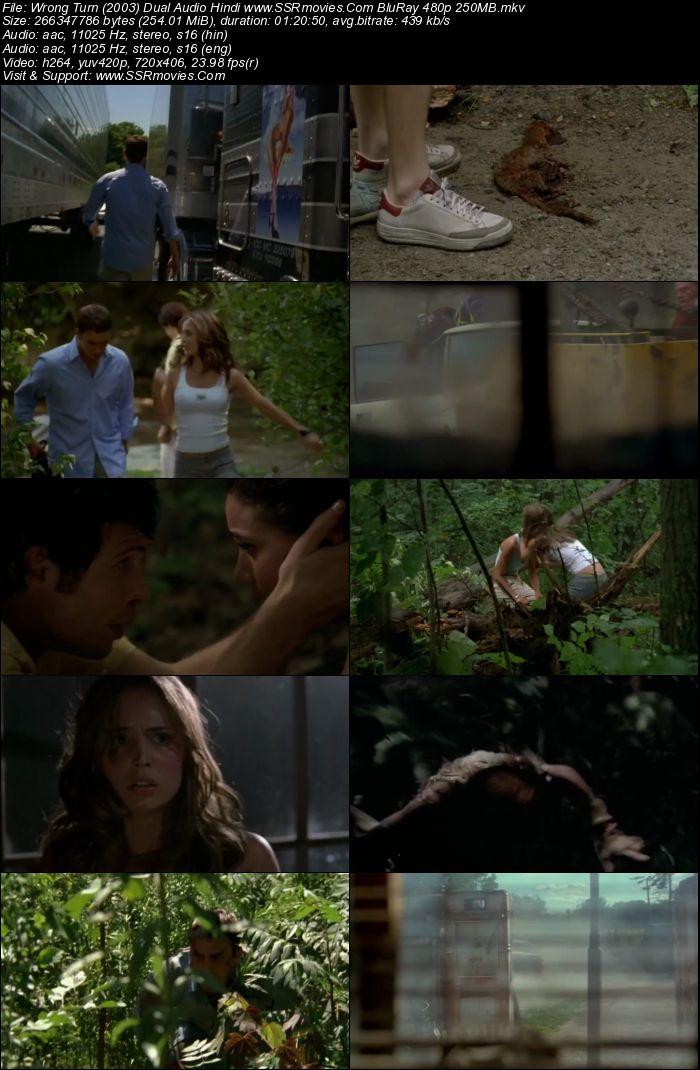 Wrong Turn (2003) Dual Audio Hindi BluRay 480p 250MB | SSR Movies