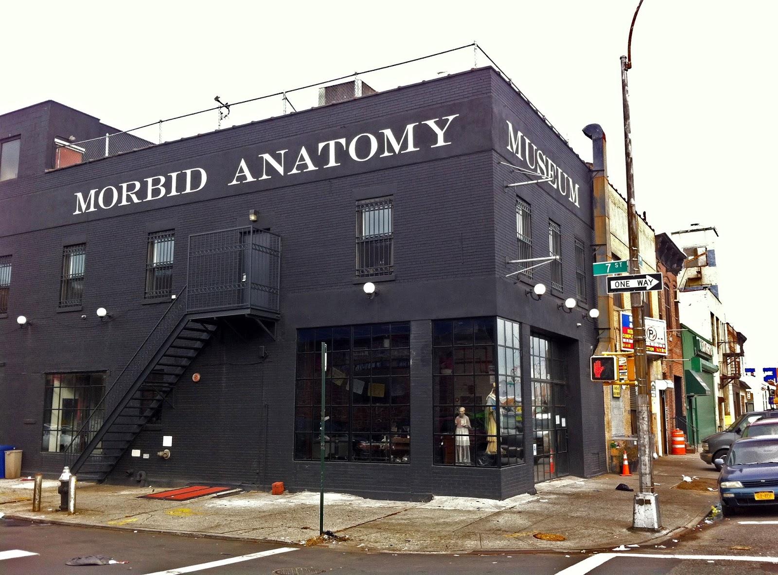 Morbid Anatomy: RIP MORBID ANATOMY MUSEUM