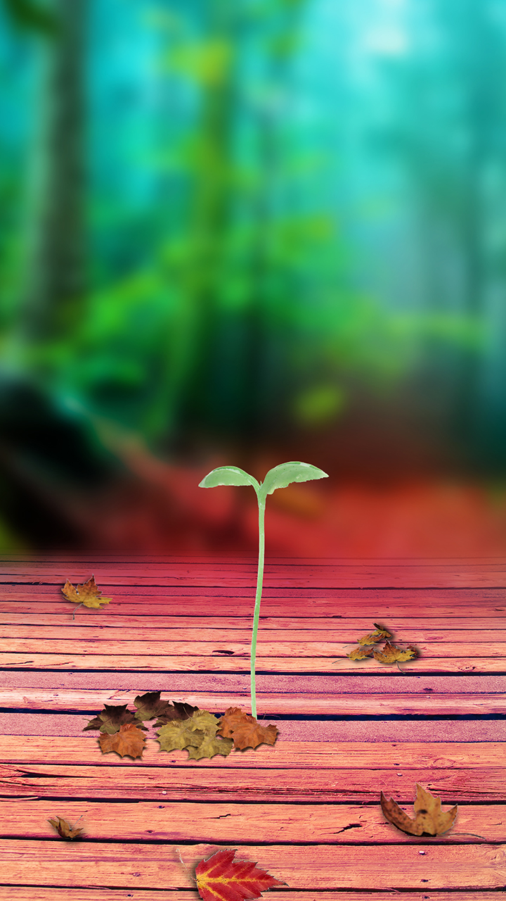 Free Wallpaper Phone: Seeds Sprouting Wallpaper Samsung Galaxy J7