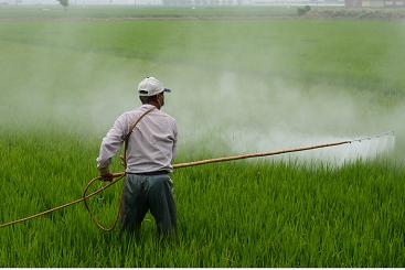 Cara Memakai Pestisida Agar Kondusif Bagi Kesehatan