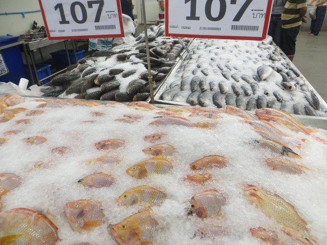 рыбы свежая