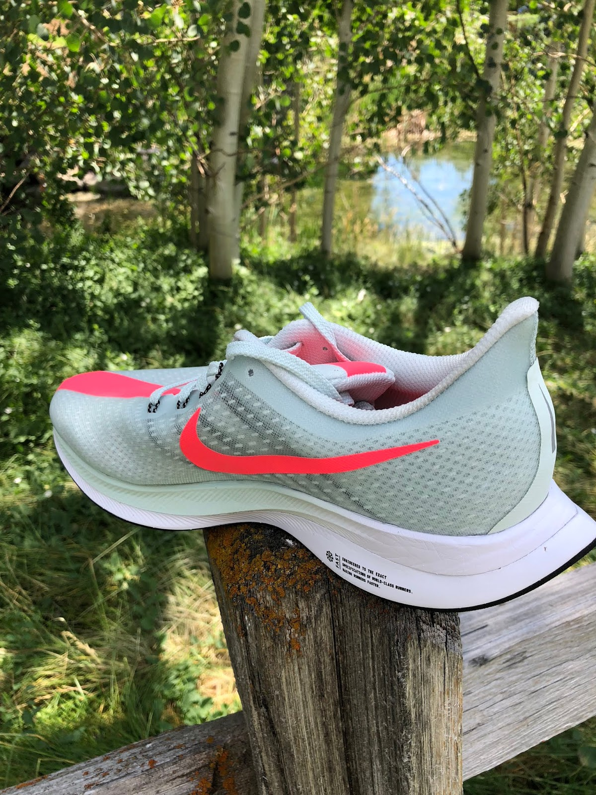 8c57c781253336 The swept back achilles collar is a distinctive feature of the Peg Turbo  and Pegasus 35. It does keep pressure off the achilles but feels a bit open  at the ...