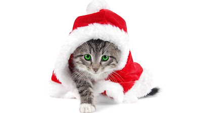 beauiful merry christmas whatsapp image