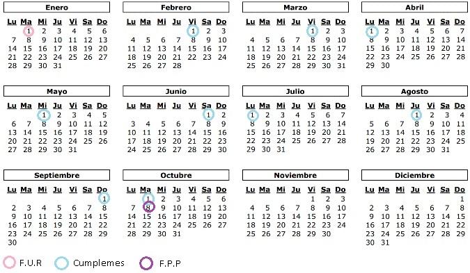 8 semanas y 5 dias cuantos meses son