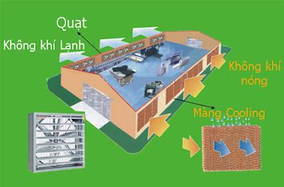Mô hình làm mát nhà xưởng bằng tấm làm mát cooling pad
