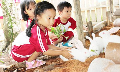 """Cùng bé khám phá """"Funny Farm"""" tại trường SaiGon Academy"""