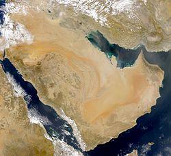 Domuza Bira İçirmek Ya Da Suudi Katar Dostluğu