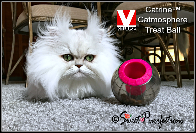 Brulee and the Catrine™ Catmosphere Treat Ball