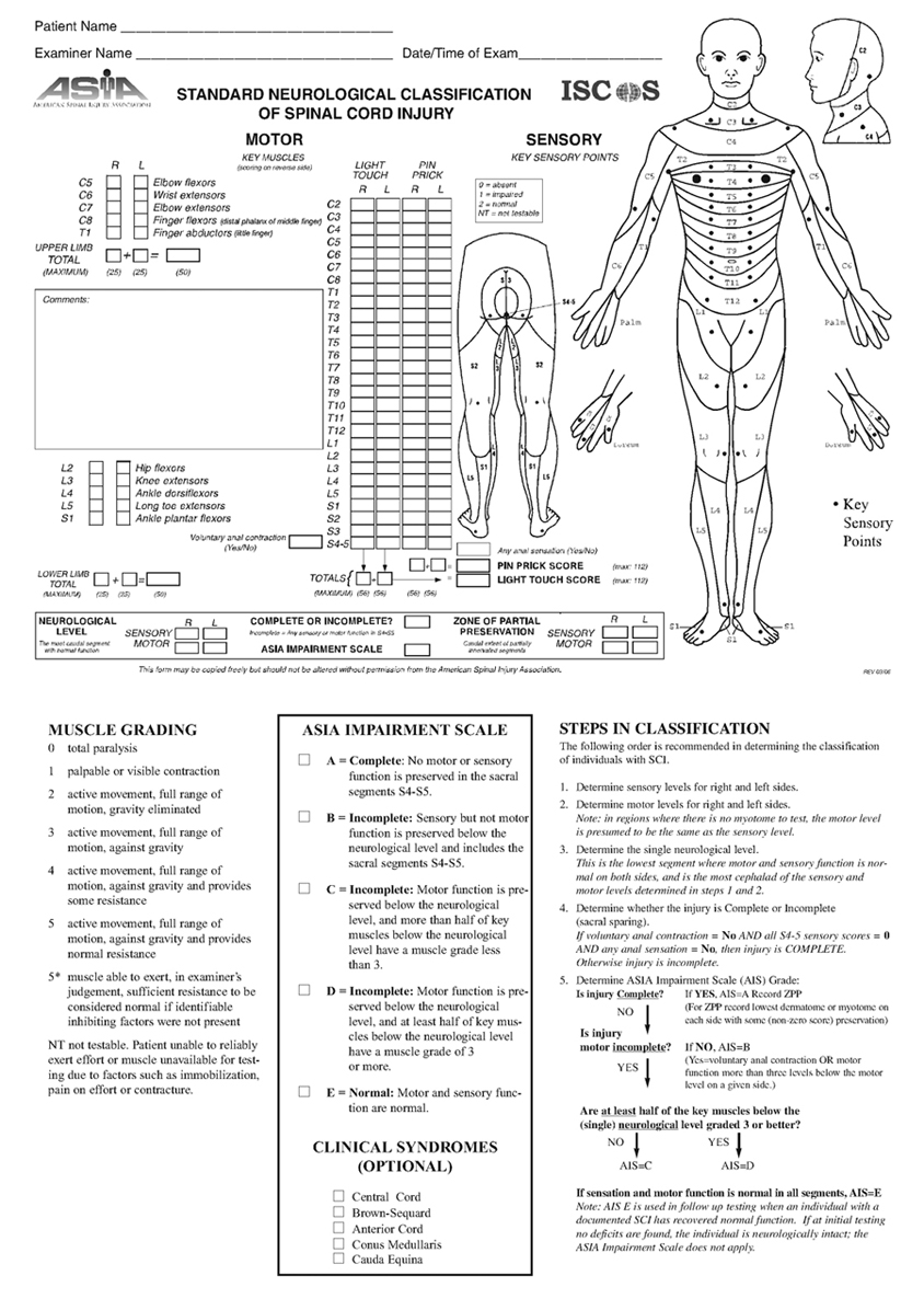 Oxford Physical Therapy >> PG Medic: Standard Neurological Classification of Spinal ...