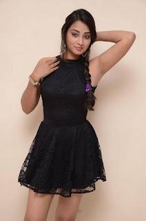 Bhanu Sri Stills in Black Short Dress at Dandu Movie Audio Launch ~ Celebs Next